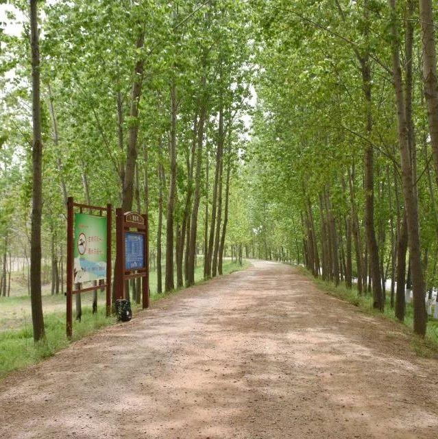 长葛双洎河改造:大周段要建11个游园!董村这段5月20通车!