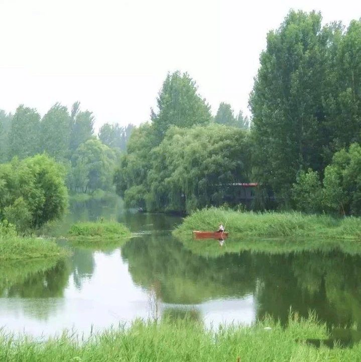 """长葛这儿要建沿河塑胶跑道、自行车赛道!种14公里""""金丝垂柳""""!"""