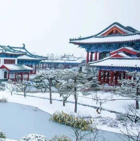 郑州园博园雪景,美翻啦!