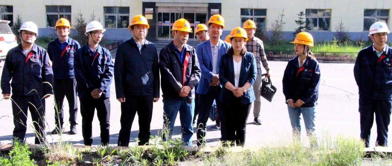 乌兰县委书记蒋冬梅一行赴青海庆华集团乌兰煤化公司调研指导工作