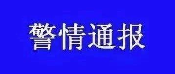 """洛阳交警速破""""11.13""""轿车撞人致重伤交通肇事逃逸案 覆车之戒"""