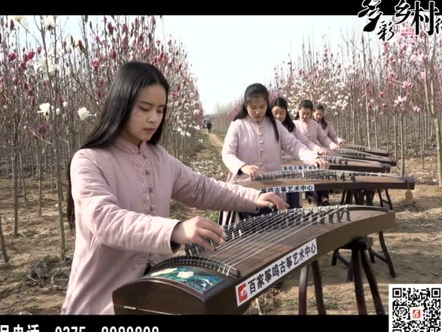 宝丰县周庄镇:以花为媒