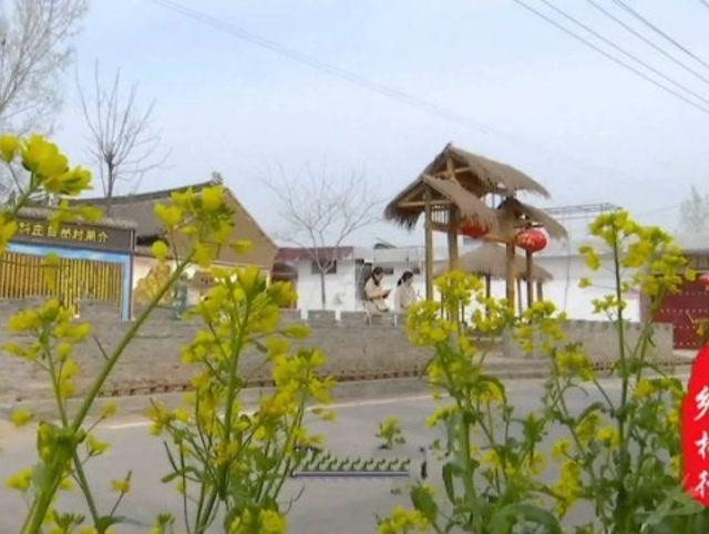赵庄镇吴庄村:环境好了
