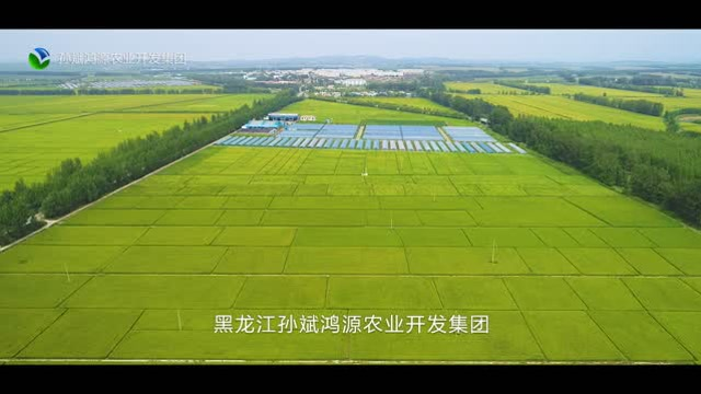 【视频】-澳门轮盘赌场县鸿源集团孙斌鸭稻宣传片