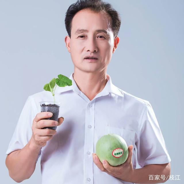 """2019年""""枝江甜瓜""""绿色发展与""""洋丰微生物菌肥""""应用交流会召开"""