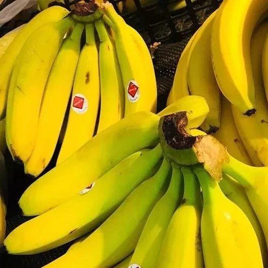 香蕉配它吃,大肚子没了,连便秘都好了!辛集人学习起来~