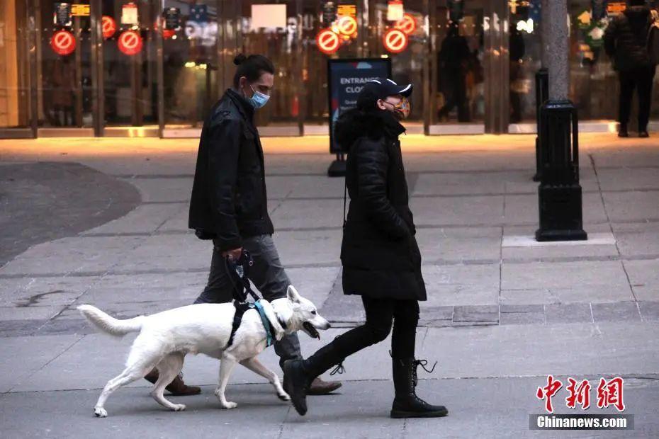 最新发布!霍邱法院最新公告!@霍邱有狗的注意!这种行为即将违法!