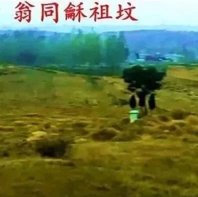 惊人发现!威尼斯人游戏网站县祁仪镇藏着光绪皇帝老师翁同龢的祖坟!