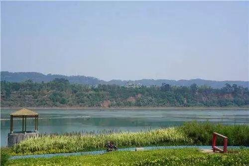 【通知】即日起,南溪长江湿地公园关闭,强行进入将.....