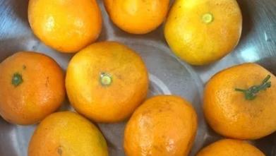 秋天这种水果辛集人要常买,活血防中风、润秋燥,功效惊人!