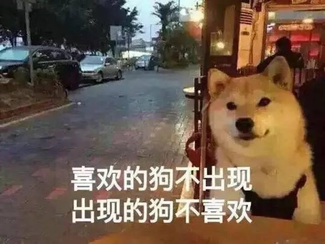 荣县同城相亲交友让单身的你进去后立马脱单!告别被催婚!
