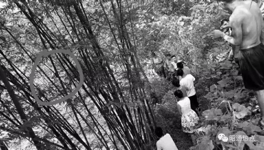 """""""我就是容不下她!""""云南一后妈虐杀8岁继女,镰刀藏在树林里,蓄谋已久…"""