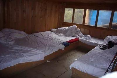 宾馆里,俩未成年少女瘫坐床上痴痴傻笑,地上还散落了几十个...