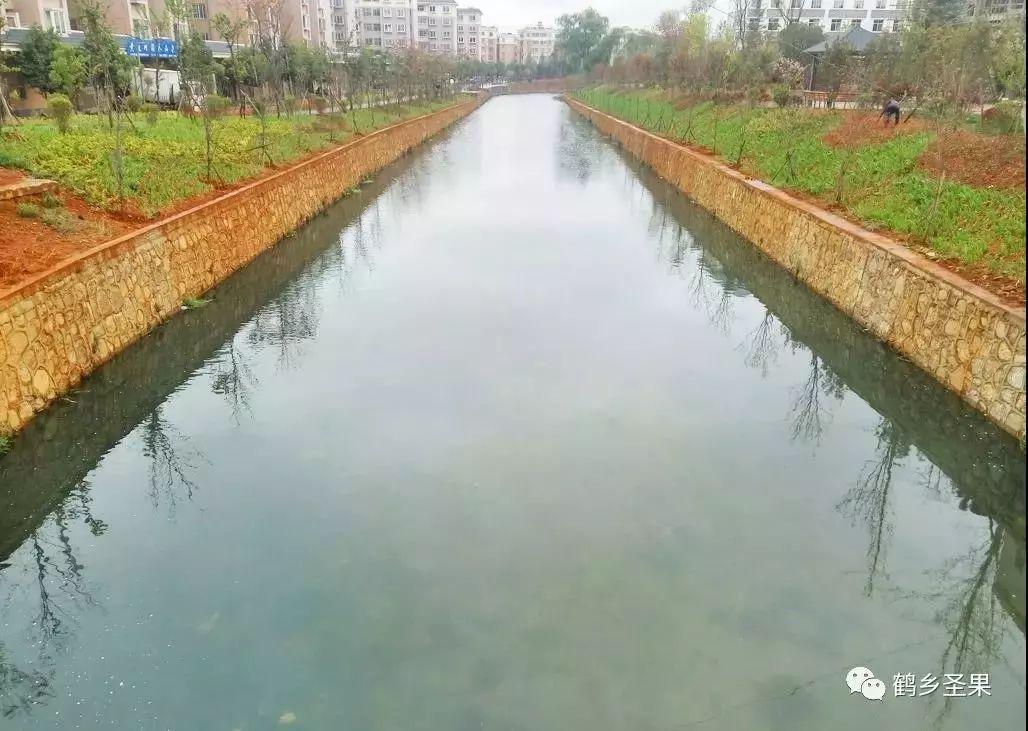 昭通中心城市河道治理见成效:秃尾河出现小鱼群
