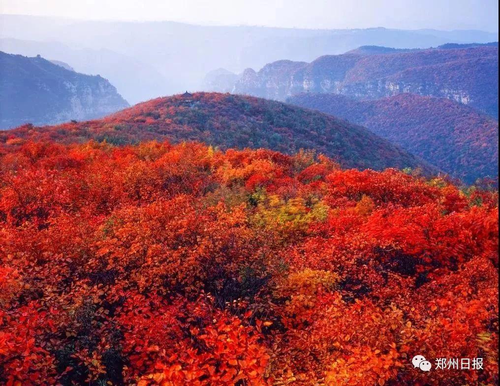 【旅游】新密人�p秋景,看最美�t�~�到�@里!