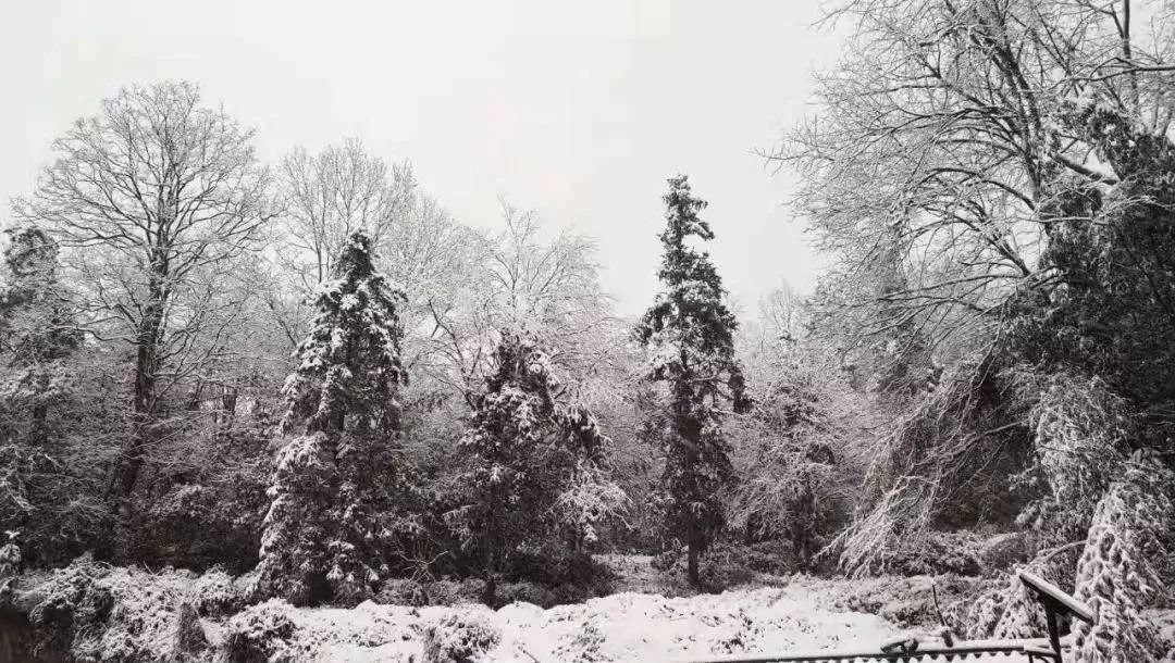 那些年,澳门威尼斯人赌场开户的冬天@降雪再度来临!