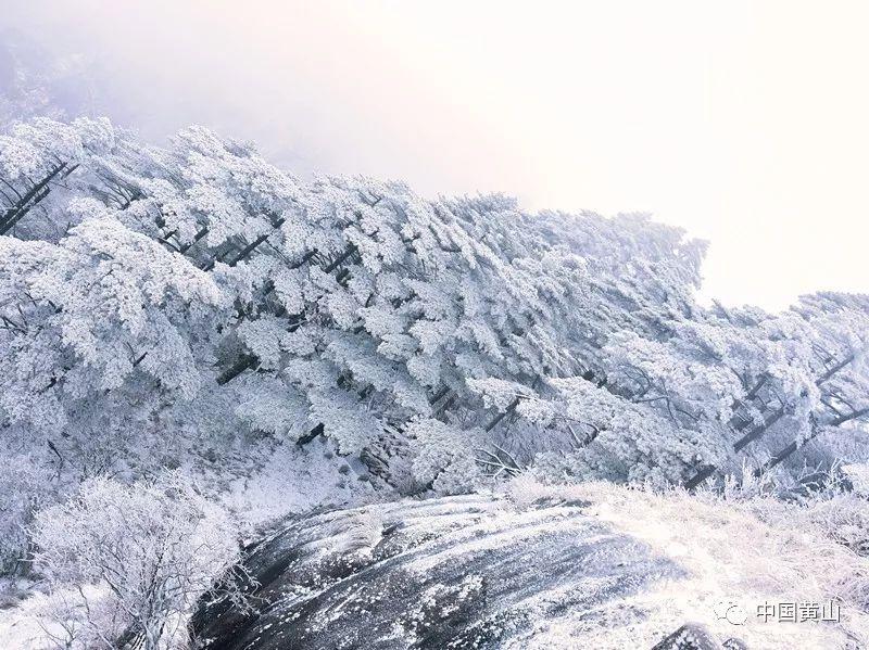 �S山�L景�^大雪持�m,雪景�^美!