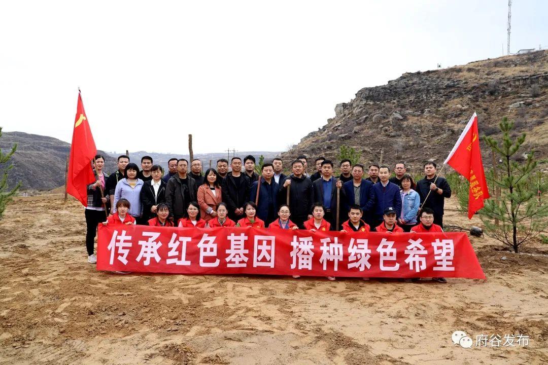 府谷县自然资源和规划局60余名干部职工合种400余株洋槐、垂柳和松柏