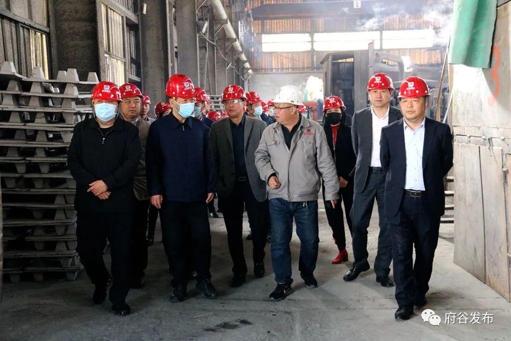省政协常委、社会和法制委员会主任郭明一行来府调研镁产业发展情况