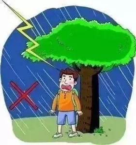树下避雨遭雷击,导致4名儿童当场死亡3名儿童受伤