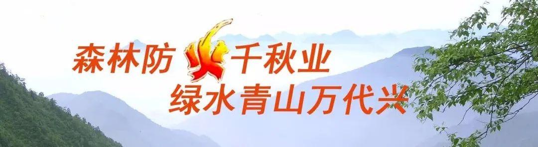 """【关注】绝对怦然""""星""""动!大众电影百花奖邀郑州影迷当观众评委"""