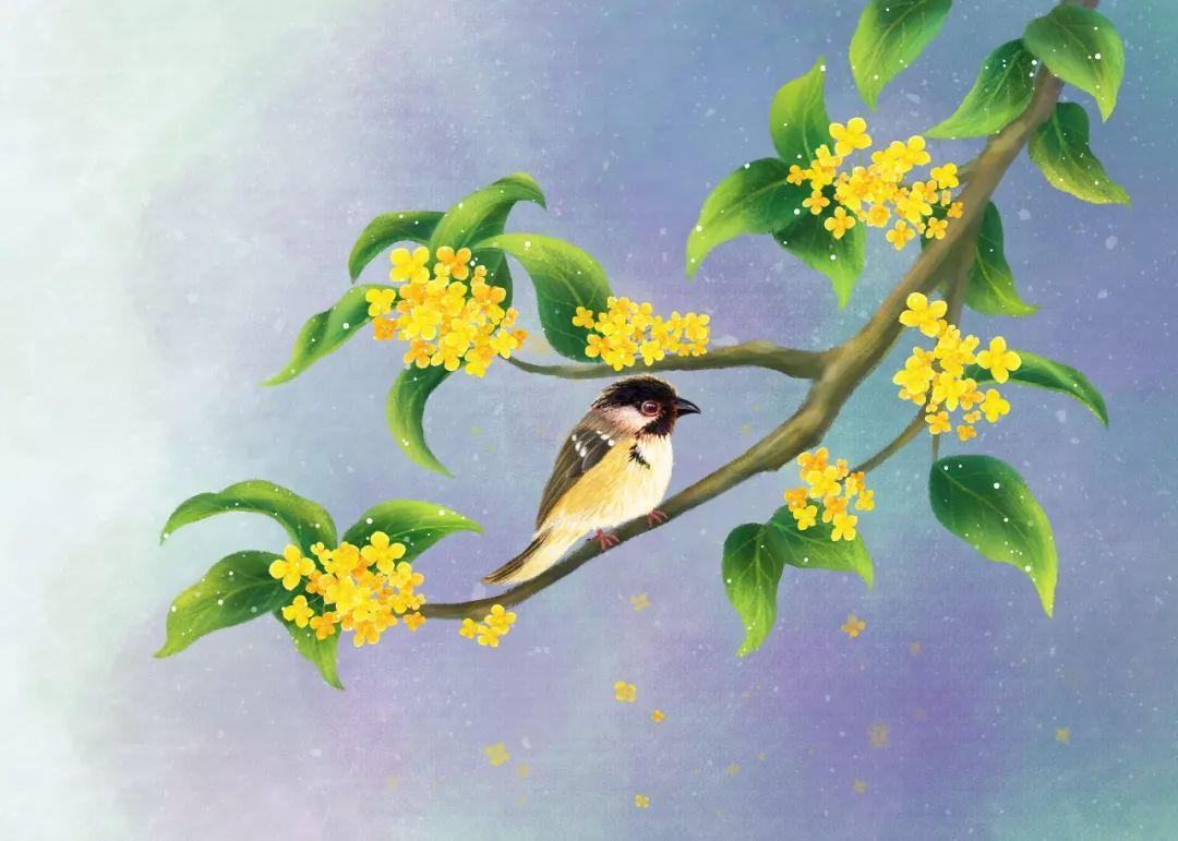 """70首诗词中的""""桂花"""",香满整个秋天"""