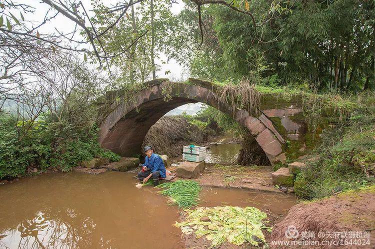 我的家乡在澳门威尼斯人娱乐官网:金马河、奎星阁、老天梯,永恒的记忆!