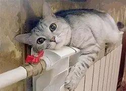 """【城事】求助!澳门金沙城中心,澳门金沙官网某小区业主投诉""""赠送""""的面积也要交供暖费?是否合理呢?"""