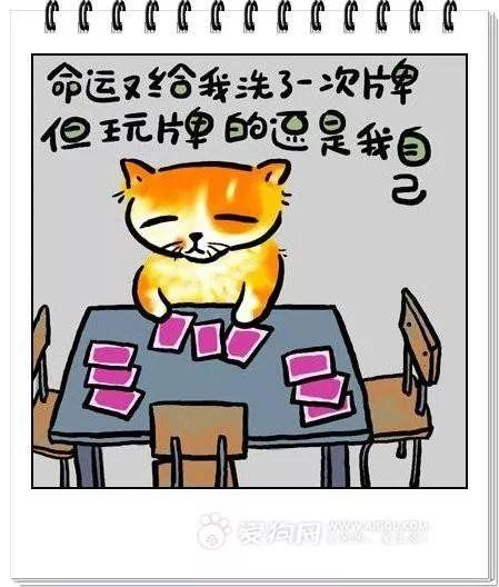 痛心!禹州西区刘亮桥发生溺亡事件!事件真相是.....
