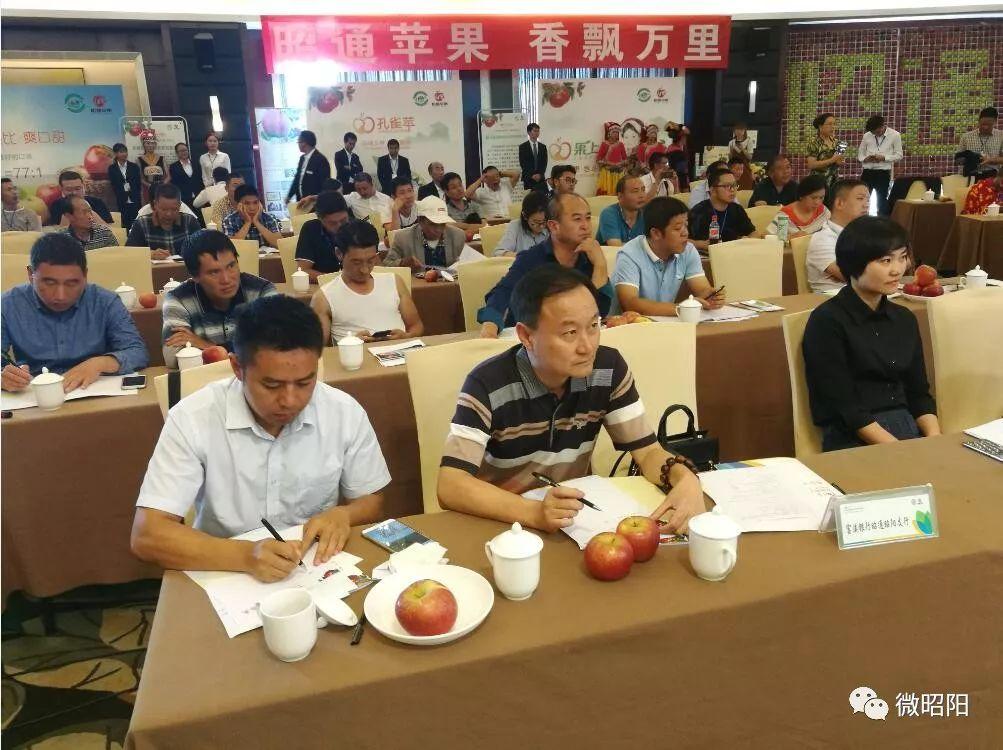 全国苹果专家齐聚秋城,为昭通苹果谋划大发展