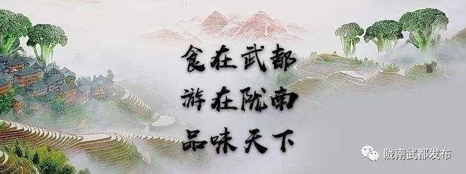 陇南市武都区首届美食文化旅游节开幕