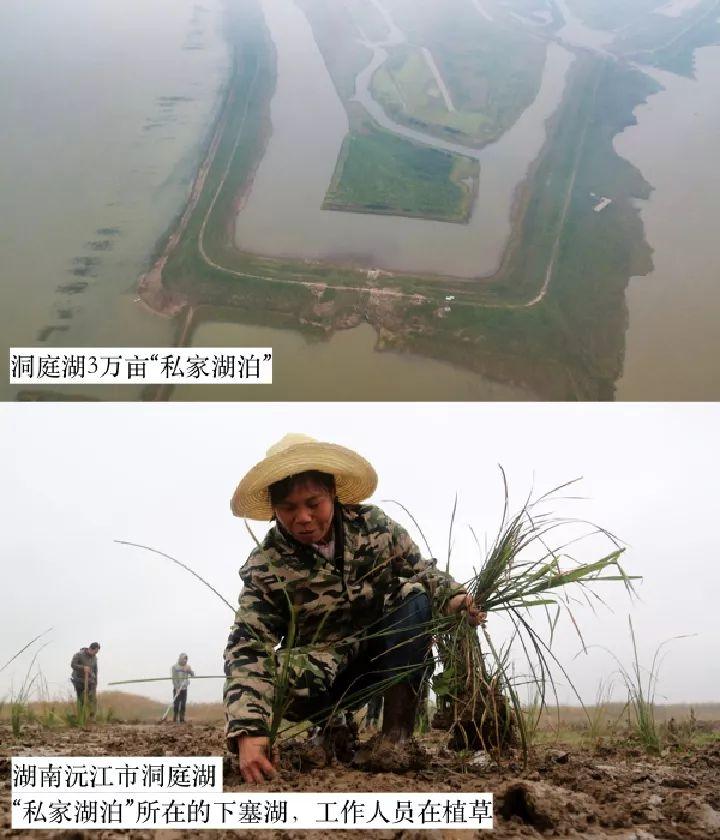 2018年新华社曝光多起破坏生态事件,记者年底追访发现……