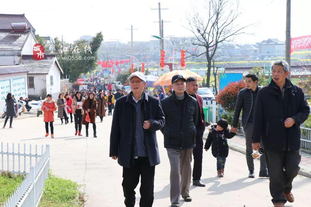 望江县第三届油菜花系列赏游活动正式启动