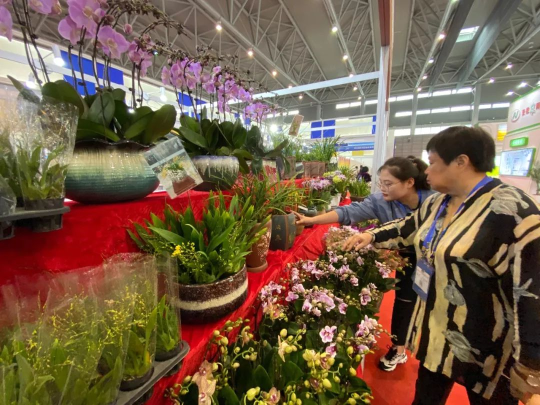 安徽农交会金奖产品公布!六安这些农产品上榜