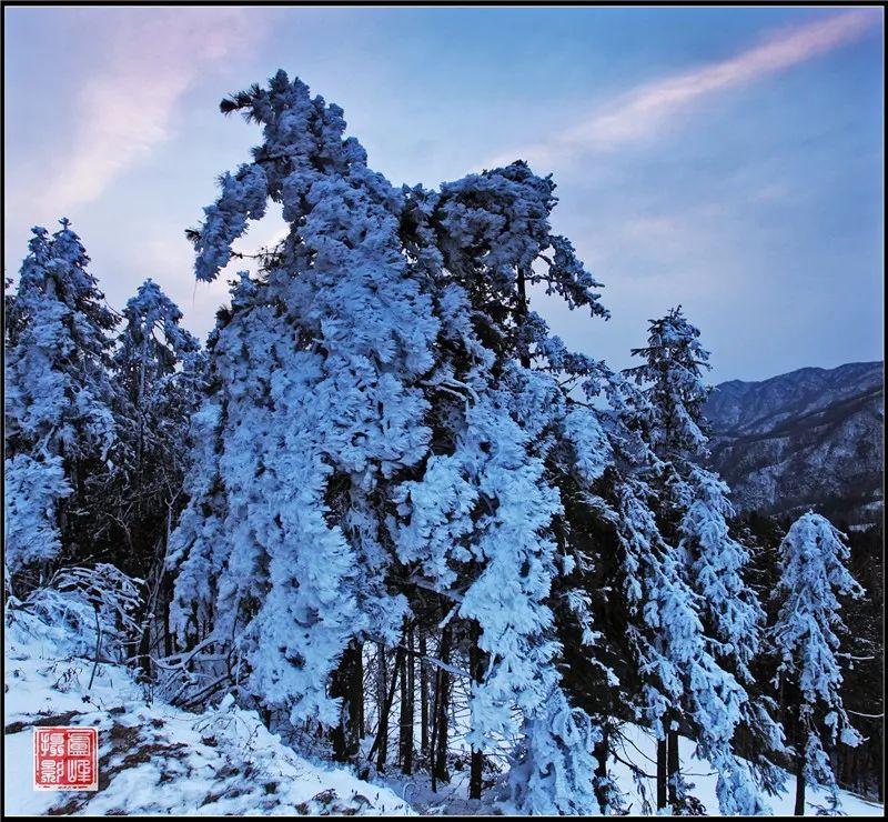 """冬天的马鬃岭,一个天然的""""冰雪王国""""!"""