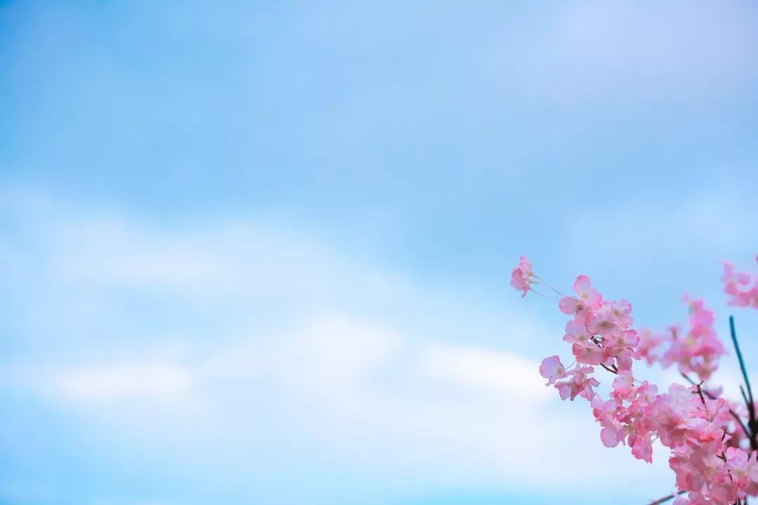 如何贴切形容春天?快来熟读这56首诗词