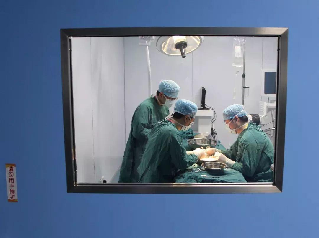 胎儿突然不动了!赣榆42岁孕妇肚子被剖开后,医生惊呆了!