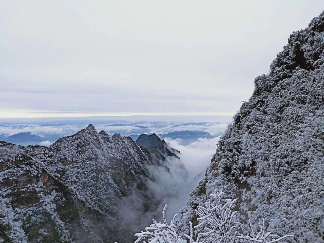 泸州古蔺又下雪啦,快来看雪景!
