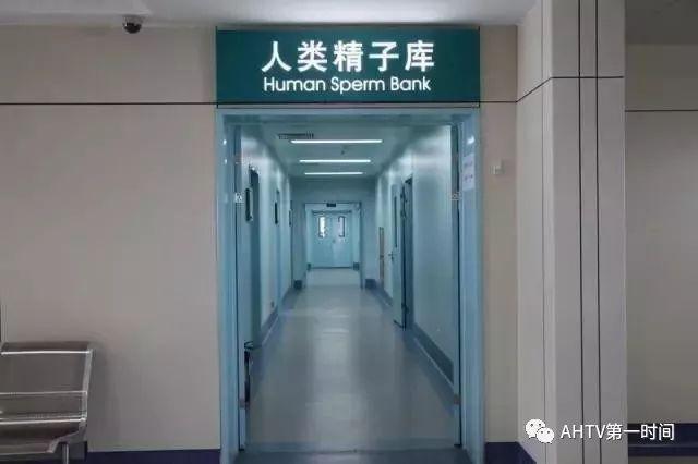 """安徽首个""""精子库""""坐落合肥!捐精有补助,还不少!来不来?!"""