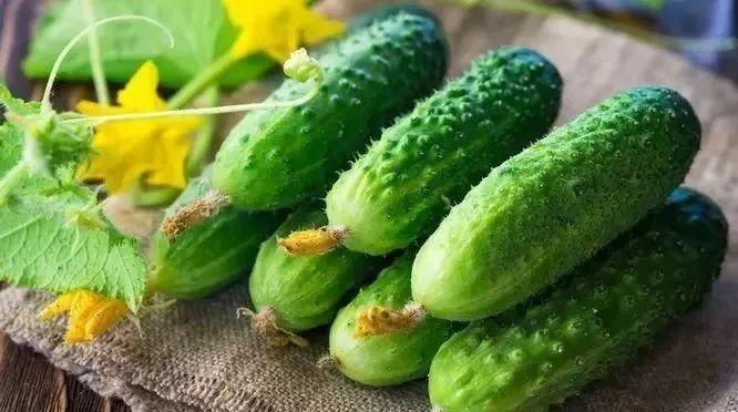 黄瓜竟有这个功能!早知道每天吃一根了~