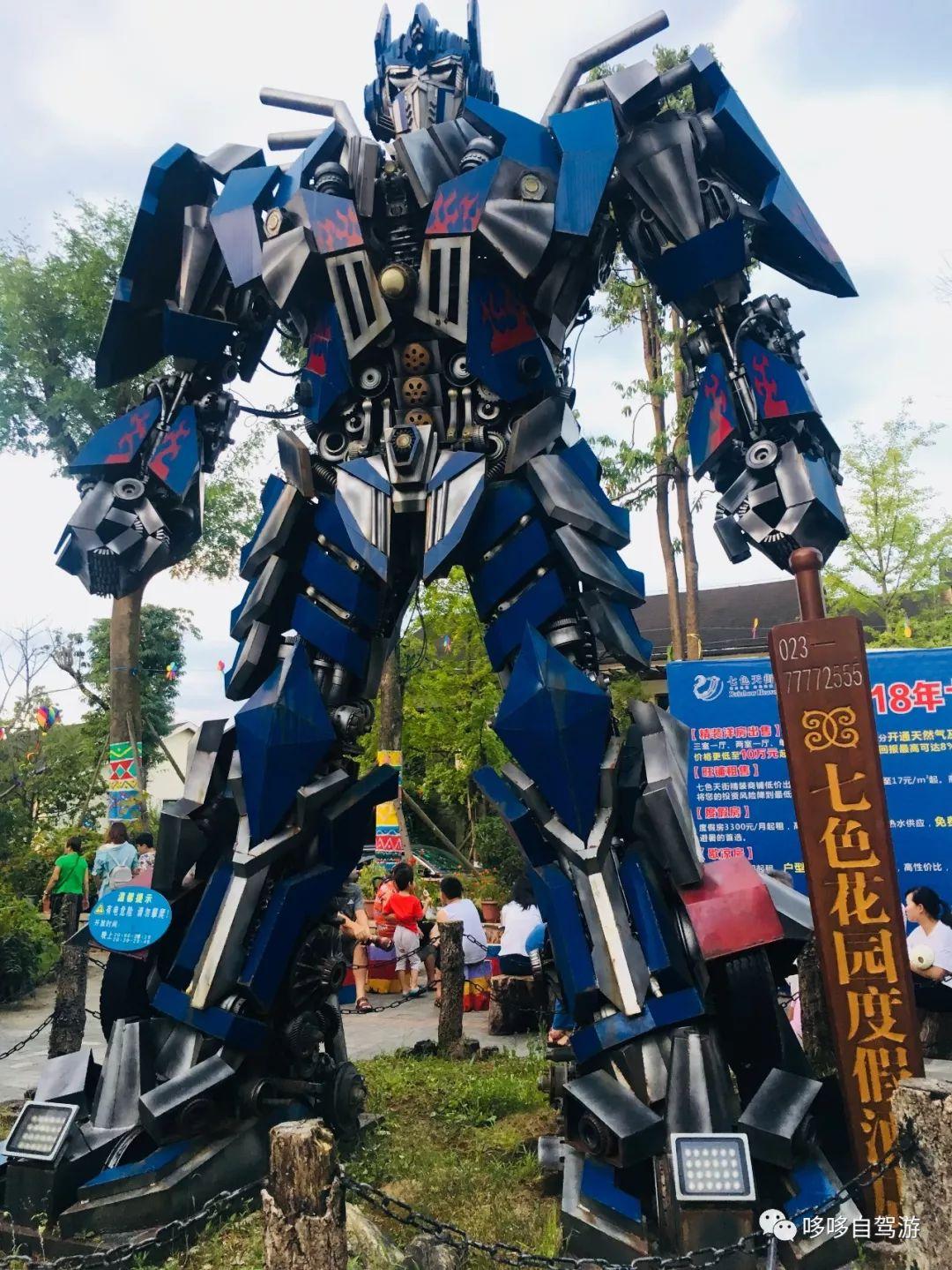 重庆武隆仙女山森林公园游记