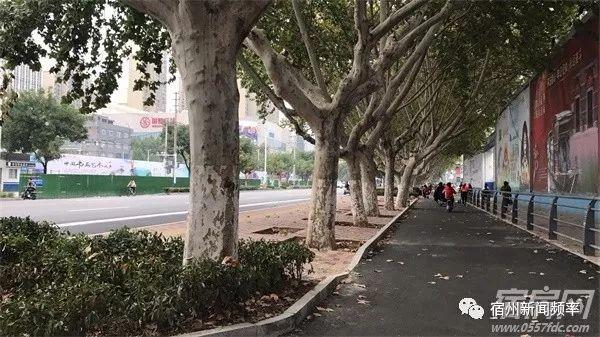 宿州首个港湾式公交站台亮相,看看在哪