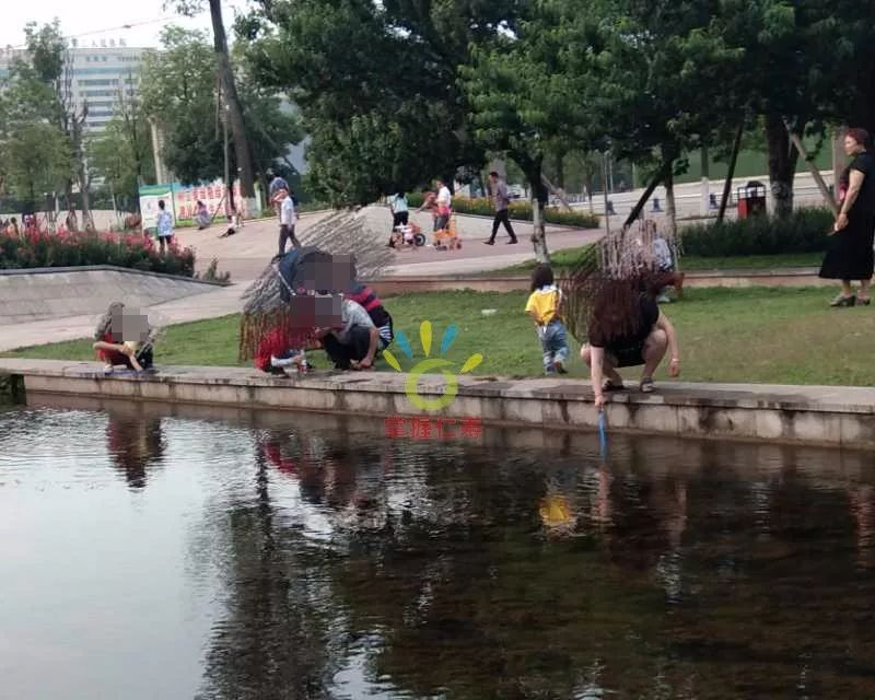 中央水体公园,大人小孩都在网鱼,希望注意一点!