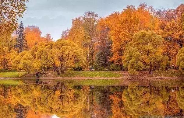 千万别和俄罗斯的秋天比美,简直让人受不了!
