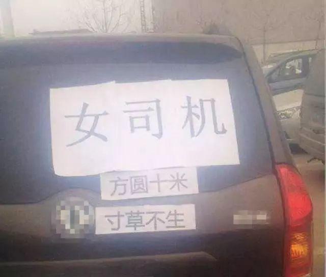 请珍爱女司机,避让女司机,那些关于女司机的趣事