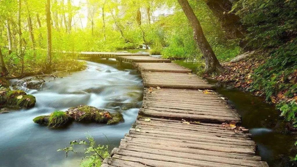 两个多月后,新安西湖生态园将变成这个样子…