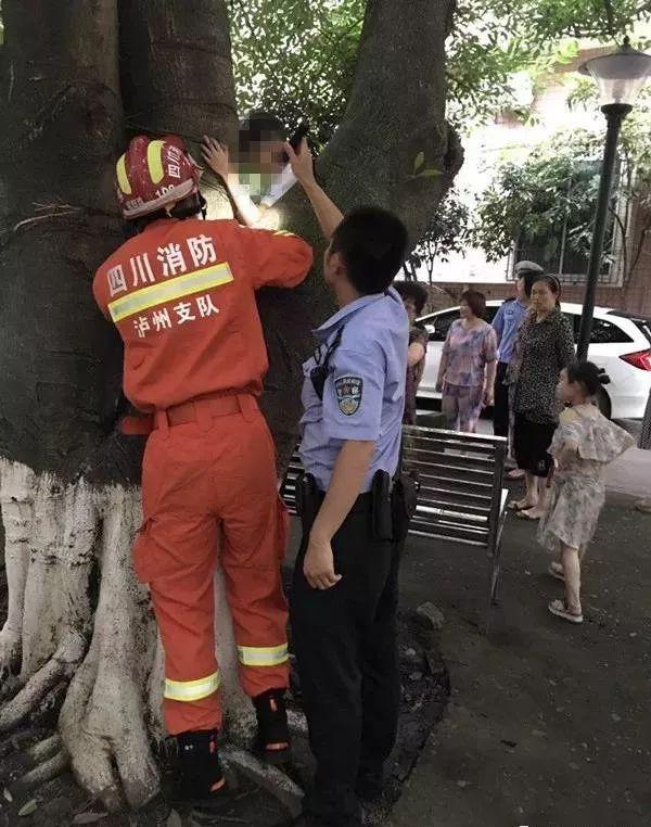 """泸州一""""熊孩子""""爬树腿被卡,民警化身""""肉垫""""营救"""