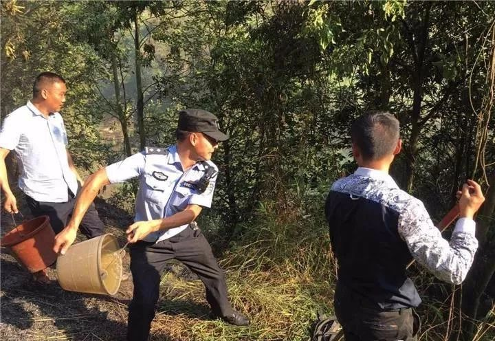 泸州一处山林发生火灾