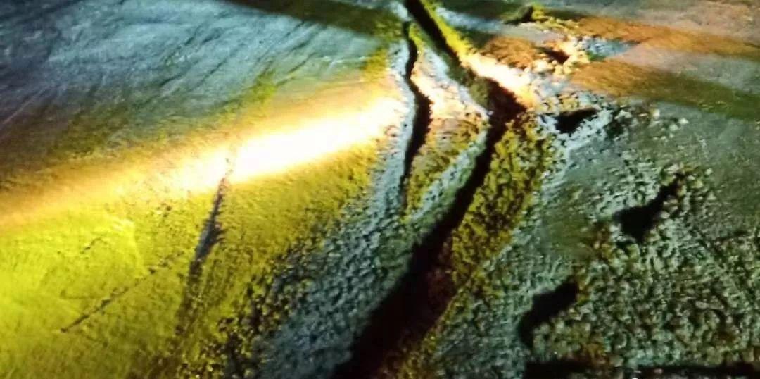 泸州男子毁路阻通行,被警方拘留12天罚款1000元