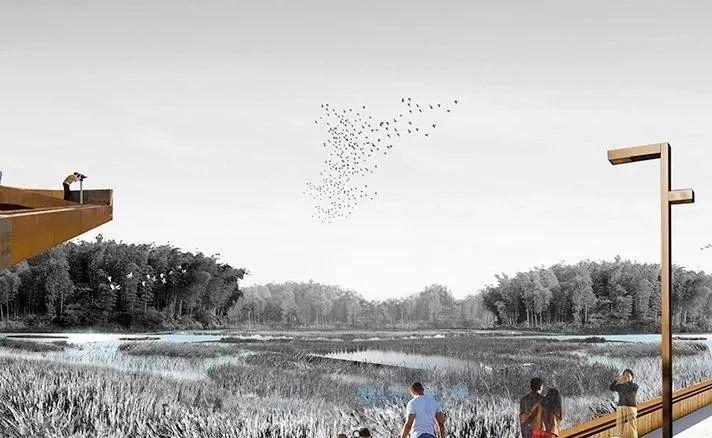 泸州两大城市公园今年开放,又有新耍处了!